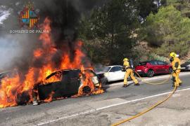 Un coche calcinado y varios afectados por las llamas en Cala Major