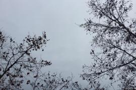Sábado frío con probabilidad de chubascos fuertes