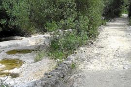 Una sentencia tumba la declaración del camino de Coanegra como público