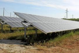 Son Bauló, el último parque solar que ha comenzado a funcionar en Balears