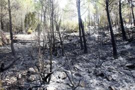 Incendio en la Serra de Morna, Eivissa