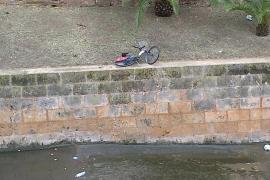 Bicipalma en el torrente de sa Riera