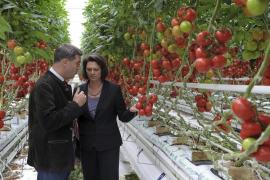 La UE aprueba ayudas a los agricultores que ascienden a 210 millones por la crisis del pepino