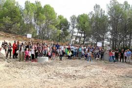Red Eléctrica acepta la propuesta de Cort de alejar las torres de Son Puig