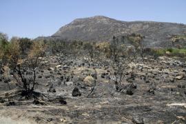 Apagan los últimos focos del incendio de Artà antes de darlo por extinguido