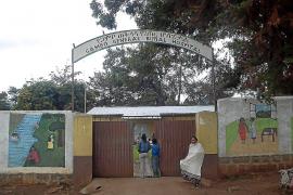 La ONG 'Llevant en Marxa' reunirá en una subasta benéfica a 500 personas