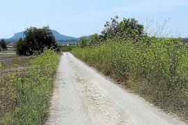 El municipio protege el territorio y elabora un catálogo de caminos públicos