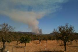 Controlado el incendio forestal entre Sant Llorenç y Artà