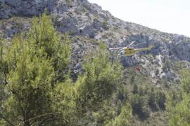 Controlado un incendio forestal en la carretera  Sa Pobla-Pollença tras quemar 7.000 metros de matojo
