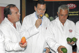 Crece la división en el PSOE por la reforma de la Constitución