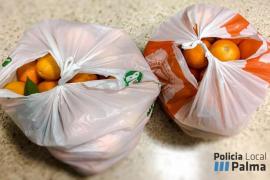Imputados dos okupas por robar dos bolsas de naranjas en Son Malferit