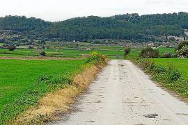 Los vecinos de Sant Joan se quedan sin espárragos al fumigar el Ajuntament los caminos