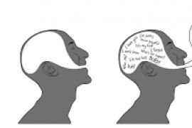 Neurocientíficos descubren una señal cerebral que indica si se entiende el habla