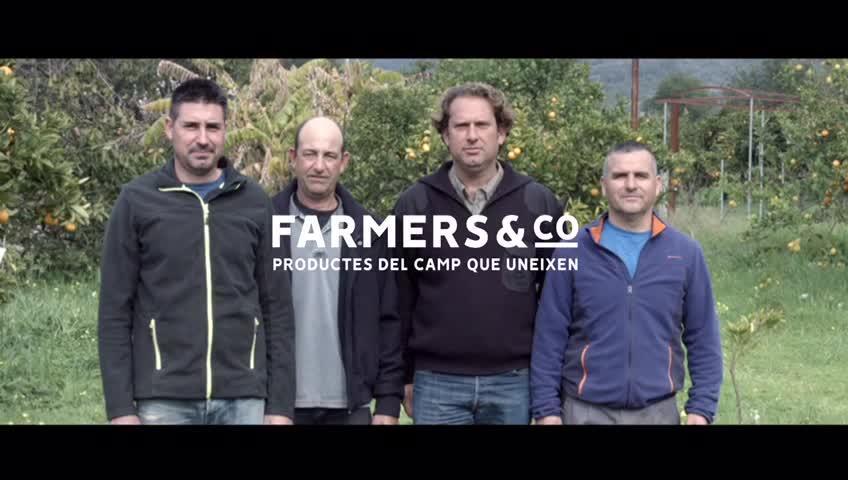 Un total de 14 cooperativas de las Islas forman la franquicia de productos del campo balear 'Farmers & Co'