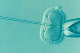 Un hospital vuelve a perder el semen congelado de un hombre que ya no será padre