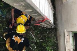 Los Bomberos de Palma rescatan un perro atrapado en el patio interior de un edificio
