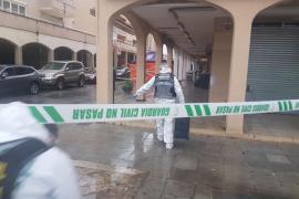 Investigan la muerte de una chica de 16 años con un golpe en la cabeza en el Port d'Alcúdia