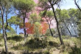 Declarados tres incendios forestales en Mallorca en menos de una hora