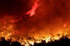 El incendio de Eivissa: bajo control