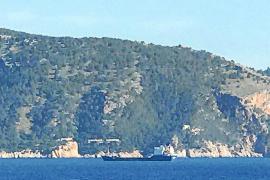 Terraferida denuncia el fondeo de un carguero sobre posidonia en Formentor
