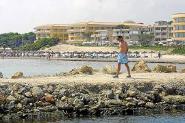 Muro va más allá que el Consell y acuerda la prohibición total de alquiler turístico en pisos