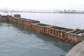 El GOB denuncia un pantalán ilegal en el port de Pollença