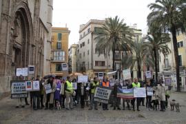 Unos 60 estadounidenses marchan en Palma contra las armas