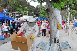 Los bomberos cobrarán por el servicio de rescate de gatos o la retirada de abejas