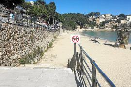 Sanciones de hasta 3.000 euros para quien pasee perros en las playas urbanas de Manacor