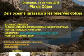 La Associació de Geòlegs de les Illes Balears celebra el Geolodía en el Pla de Cúber