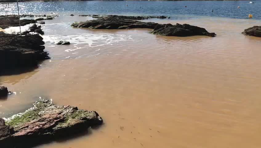 Vecinos de Alcúdia se manifiestan contra los vertidos en la playa de Es Clot