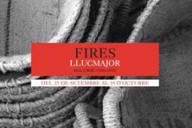 Fires de Llucmajor 2011