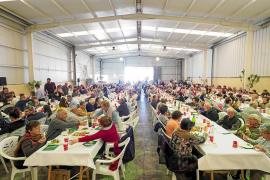 La Cooperativa Agrícola de Sant Antoni aumenta la producción de algarroba y almendras