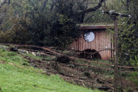 El niño herido grave en San Sebastián quedó atrapado bajo un árbol de 15 metros