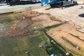 El temporal de estos días llena de basura la zona del Club Náutico del Portixol