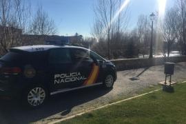 46 detenidos por falsificar documentos para obtener el carné de conducir