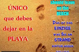Amics de S'Arenal de Llucmajor colocará carteles en la playa para concienciar sobre su limpieza