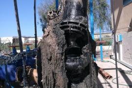 El Ayuntamiento de Palma le declara la guerra al 'monstruo de las toallitas'