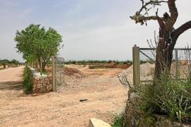 El Consell fija en junio el inicio de los trabajos de ampliación de la autovía hasta Campos