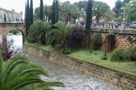 Los Bomberos de Palma realizan una veintena de actuaciones por las lluvias