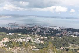 El Port de Palma registró este martes la mayor concentración de cruceros de este año