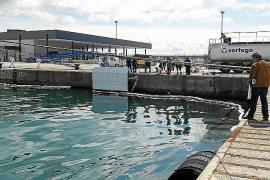 La Autoritat Portuària sancionará al crucero que vertió fuel en Palma