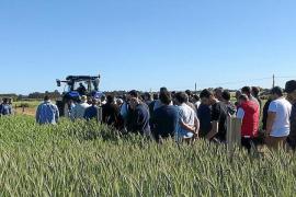 El sector augura una «muy buena» cosecha de cereales