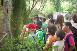 CP Els Tamarells en Natura Parc