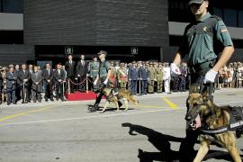 El coronel anima a la Guardia Civil «a no desfallecer pese a estos tiempos difíciles»