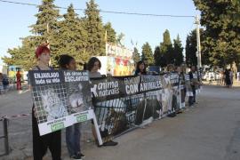 Protesta de los animalistas de AnimaNaturalis frente al circo Roma