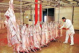 USO anuncia protestas por el futuro cierre del matadero de Palma