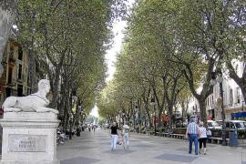 Los restauradores de es Born podrán poner terrazas en 2012