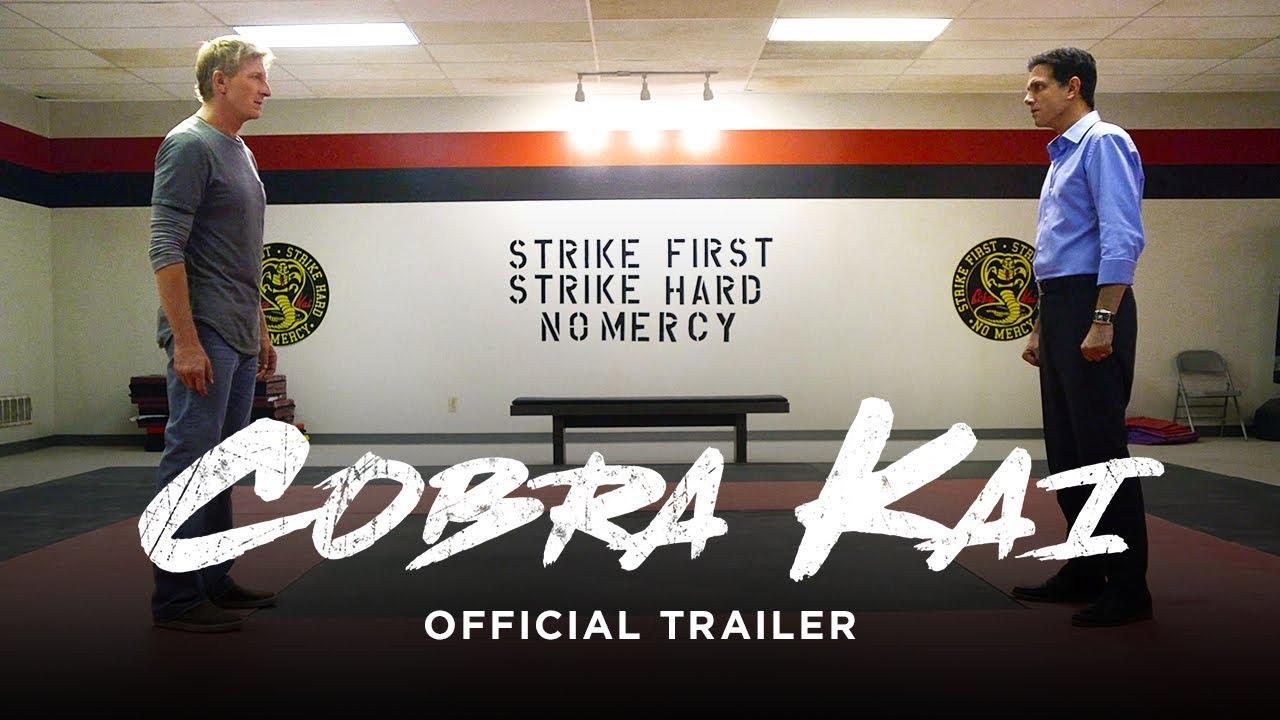 'Cobra Kai' devuelve la fiebre por 'The Karate Kid' 34 años después