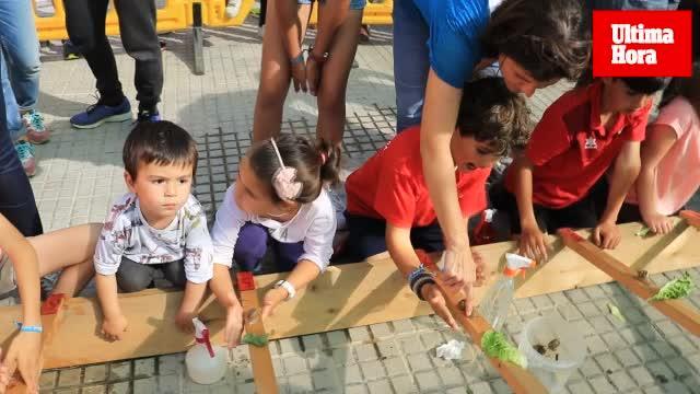 Más de 150 niños participan en Sant Jordi en la tradicional y divertida carrera de caracoles